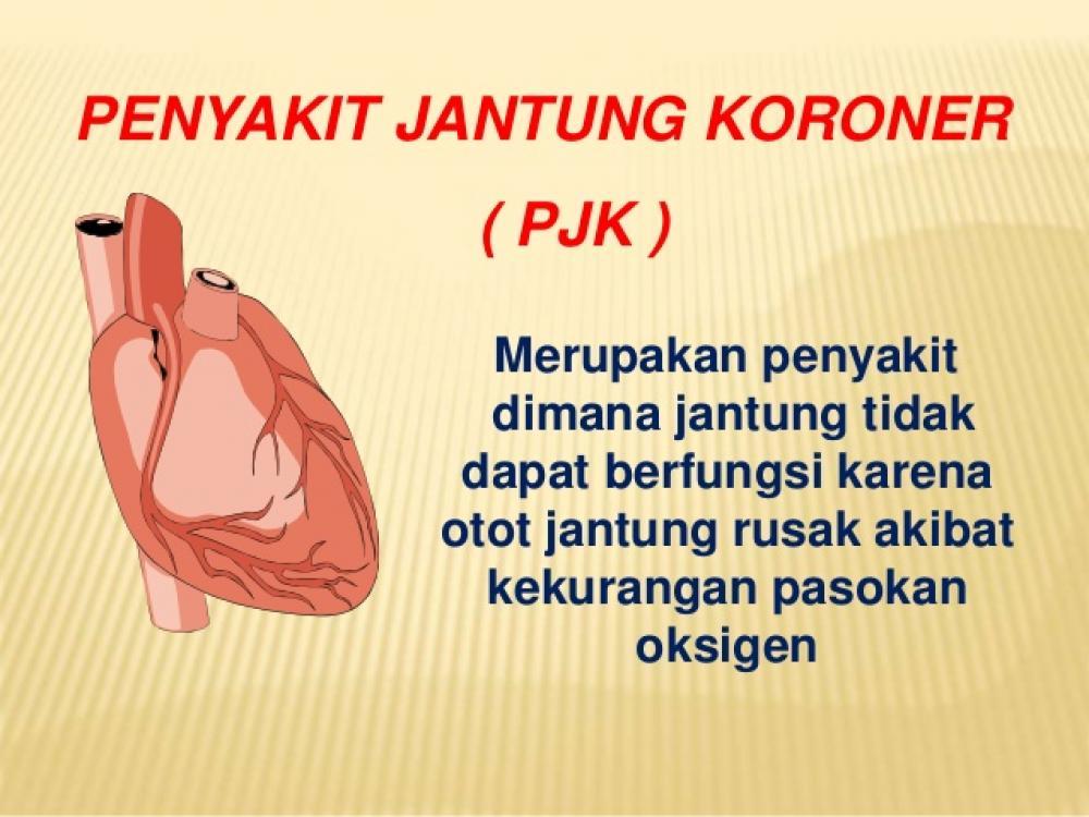 Mengenal Penyakit Jantung Lebih Dalam dan Pengobatannya Secara Herbal